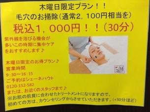 IMG_2315.JPG
