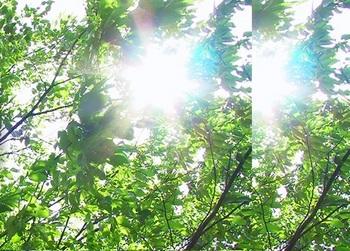 shigaisen.jpgのサムネイル画像