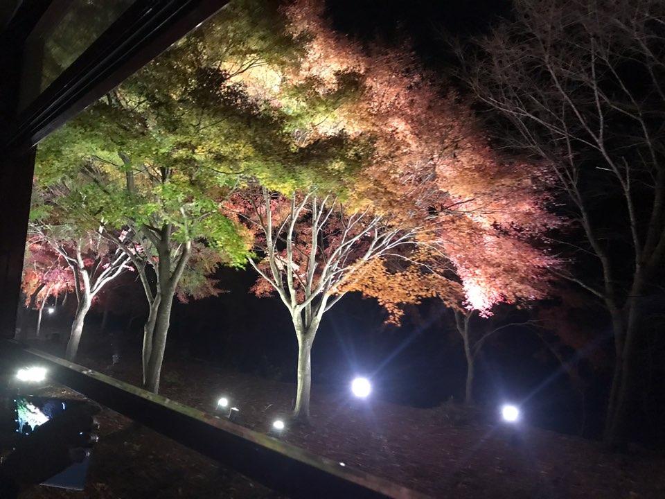 http://hifuka-eigo.com/kyoto/beauty/blog/KakaoTalk_Photo_2018-12-03-22-49-24-4.jpeg